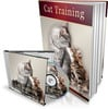 Cat Training - How You Can Train Your Cat