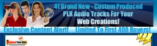 Product picture 41 Brand New - Custom Produced PLR Audio Tracks For Your Web
